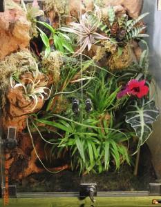 ЕА 850х450х420. Декор с тропическими растениями